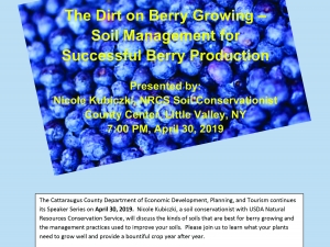 Dirt on Berry Growing Poster