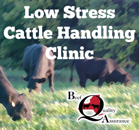 Low Stress Cattle Handling Clinic