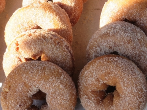 Pumpkin donuts at Pumpkinville are delicious!