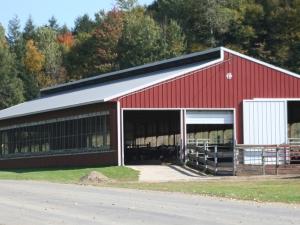 the calf and yearling barn on Teelak farms