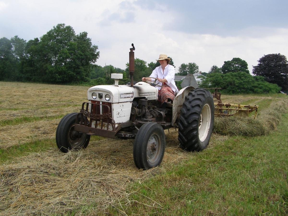 Cynddylan on a tractor essay