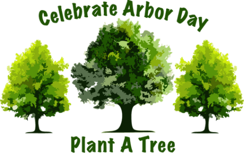 Plant a Tree Arbor Day at Forevergreens