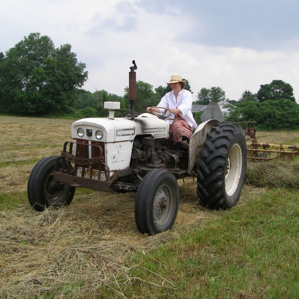 Nora Wolf of Allegany rakes hay for baling in a field along South Nine Mile Road July, 2008. The hay will be used to feed the 385 goats she keeps on her nearby farm. Photo by Rick Miller