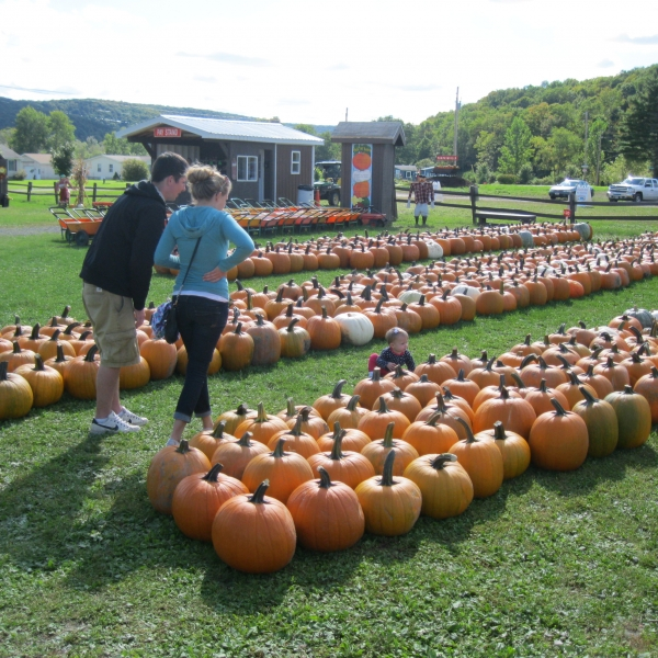 Family at Pumpkinville