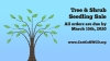 Tree & Shrub Seedling Sale until March 15, 2020